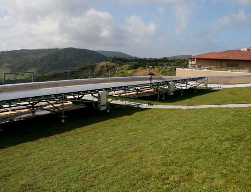 SOKA University Green Roof Controls Stormwater Run-Off and Harnesses the Power of the Sun