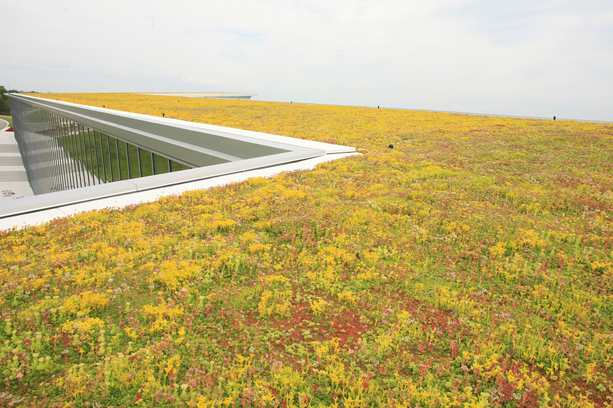 Red, green, and yellow sedum fill the roof of One Haworth Center.