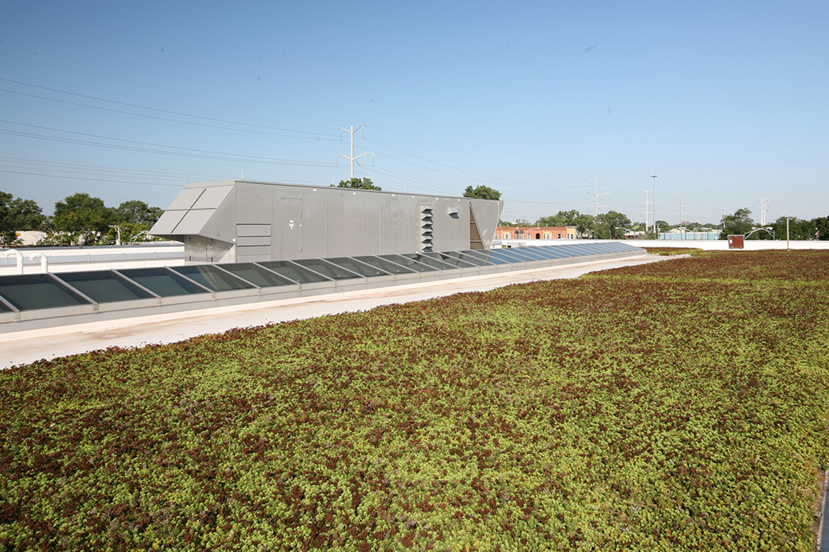 A green roof system with red and green sedum.