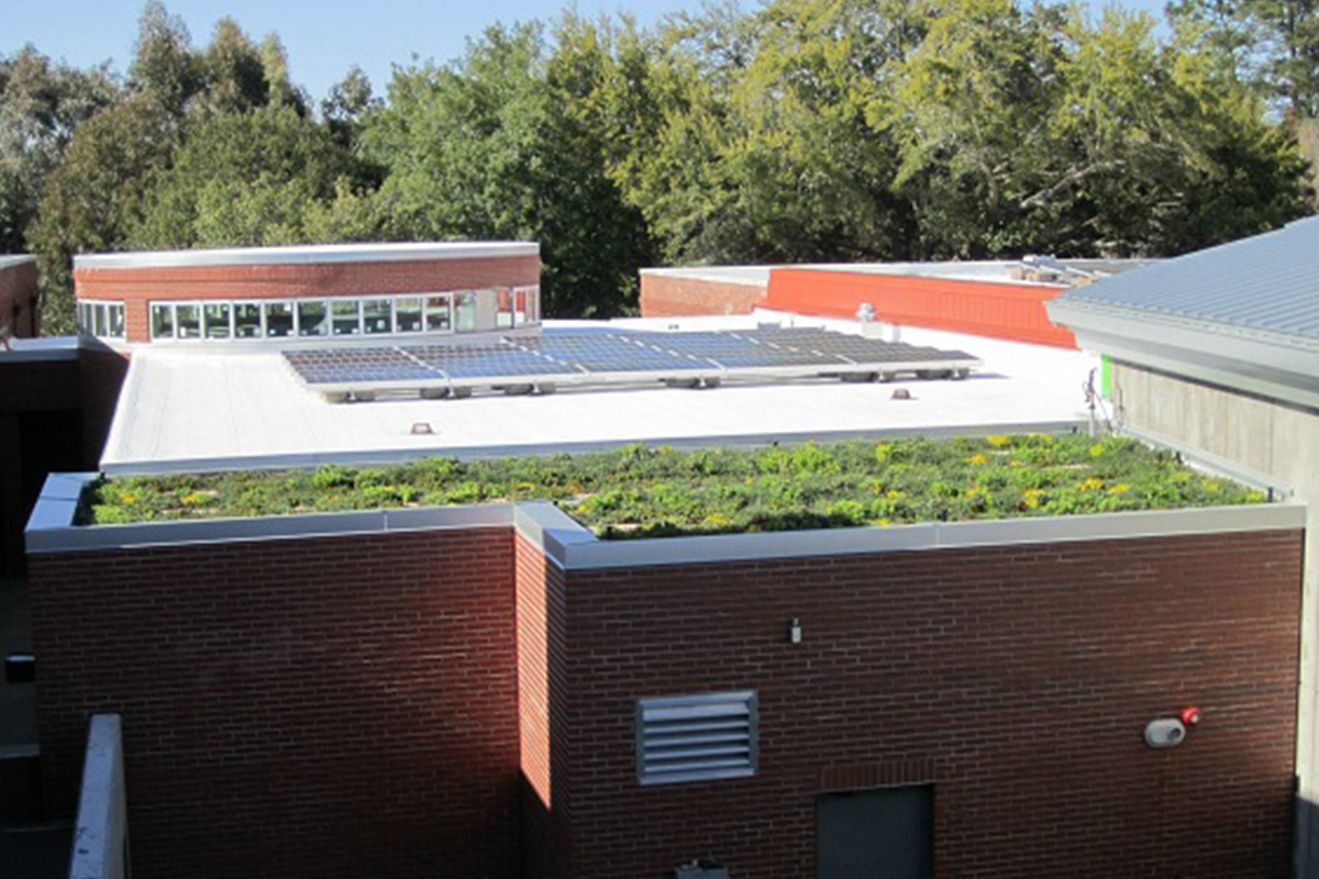 A brick building with a vegetated green roof and solar panels.