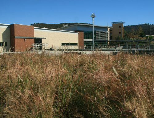 California State University San Marcos Will Feature Green Roof