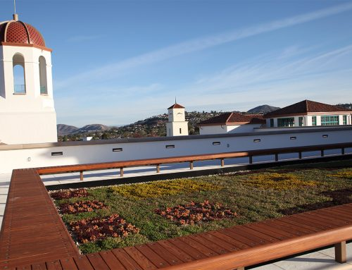 San Diego State University's Green Roof Set For Installation