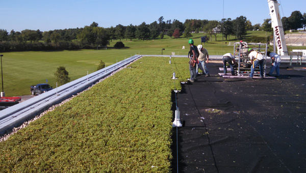 Middlebury-Squash-Center-Green-Roof-Installation-in-Progress