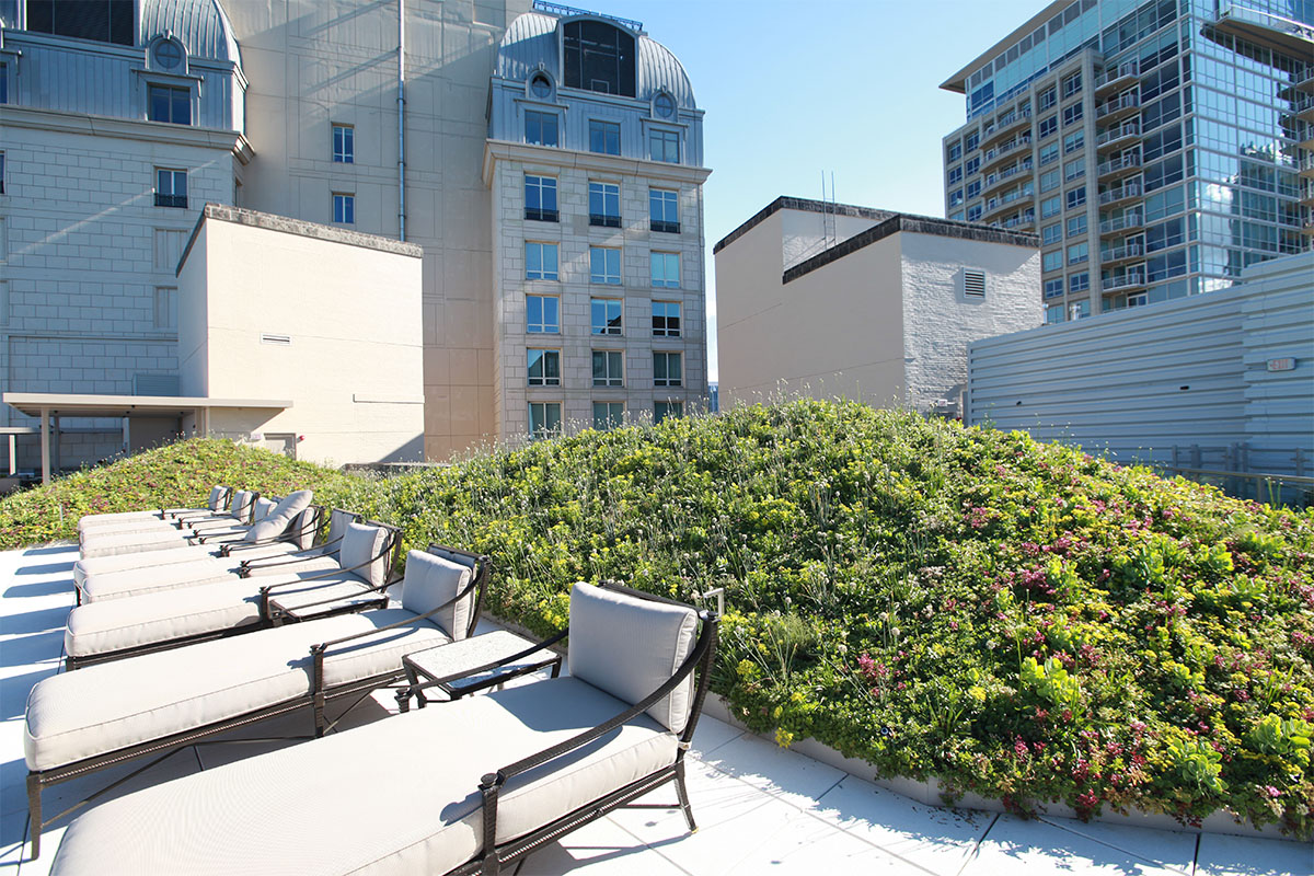 Patio chairs set in front of a lush green roof mound.