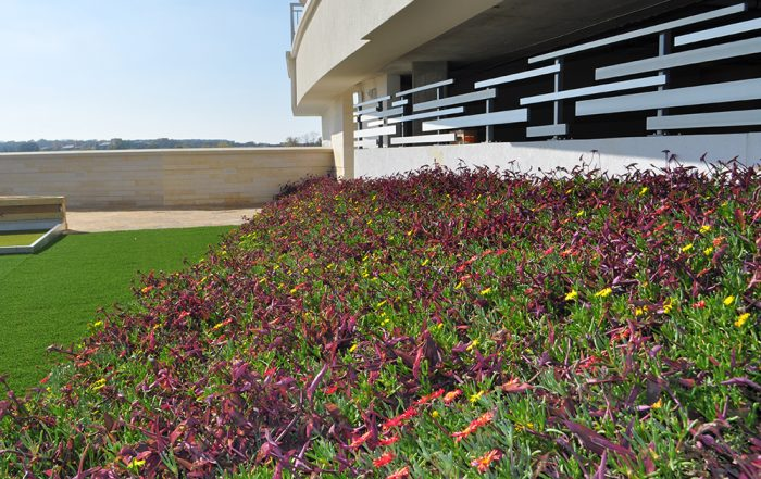 Red, yellow, purple and green flowers fill the LiveRoof at Gable Park Plaza Tower.