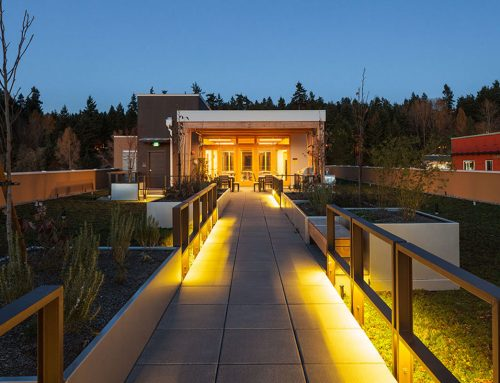 Growing Pride on a Roof Top at Velocity Apartment Community, Kirkland
