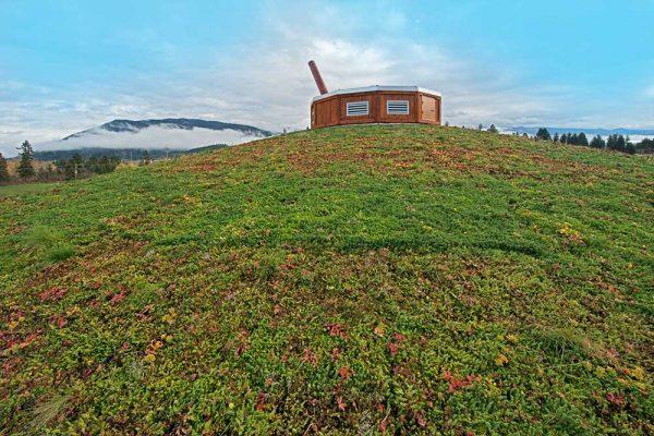 Splatsin Living Roof by LiveRoof