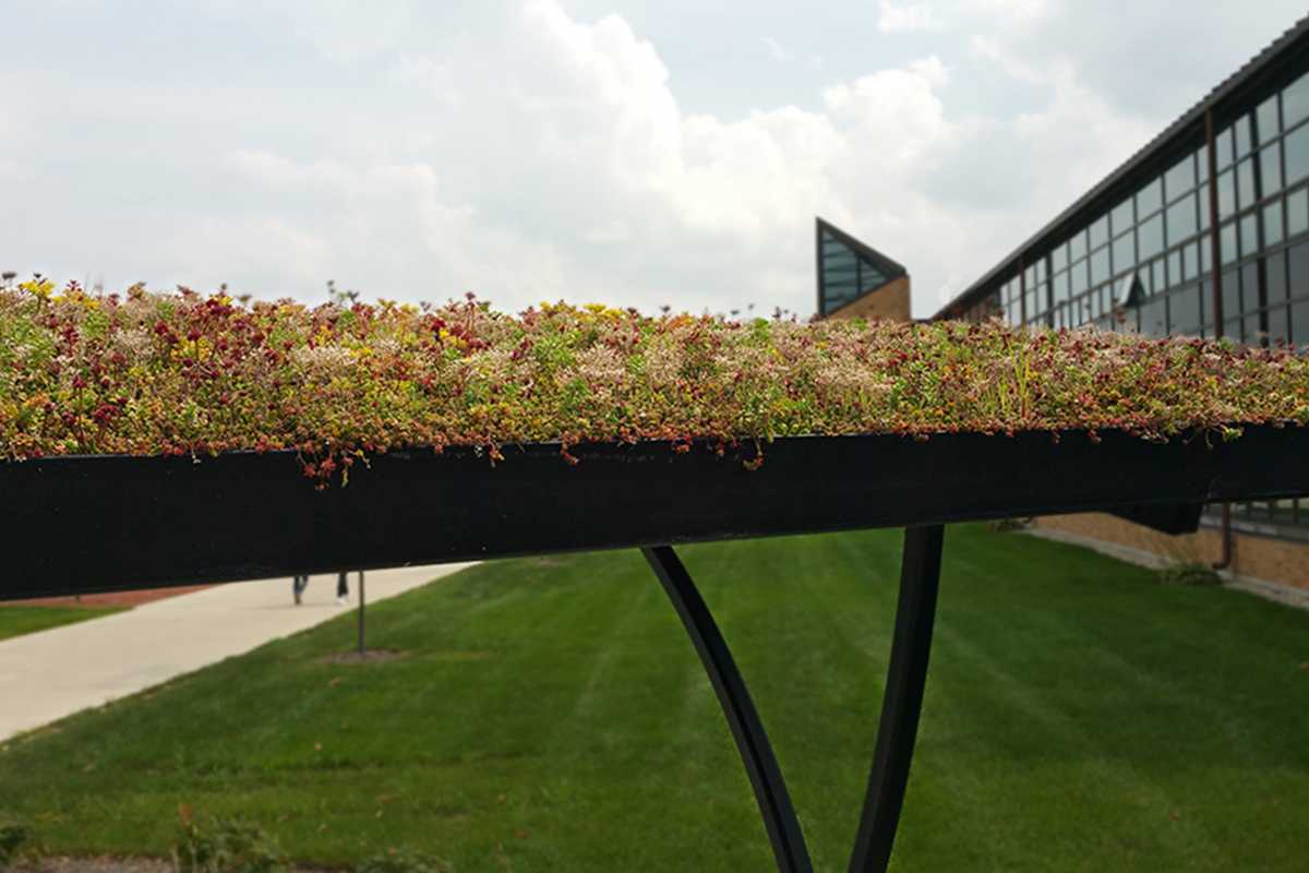 Colorful plants planted in the roof of a bike shelter.