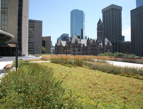 Nathan Phillips Square Continues to Rack Up Design Awards