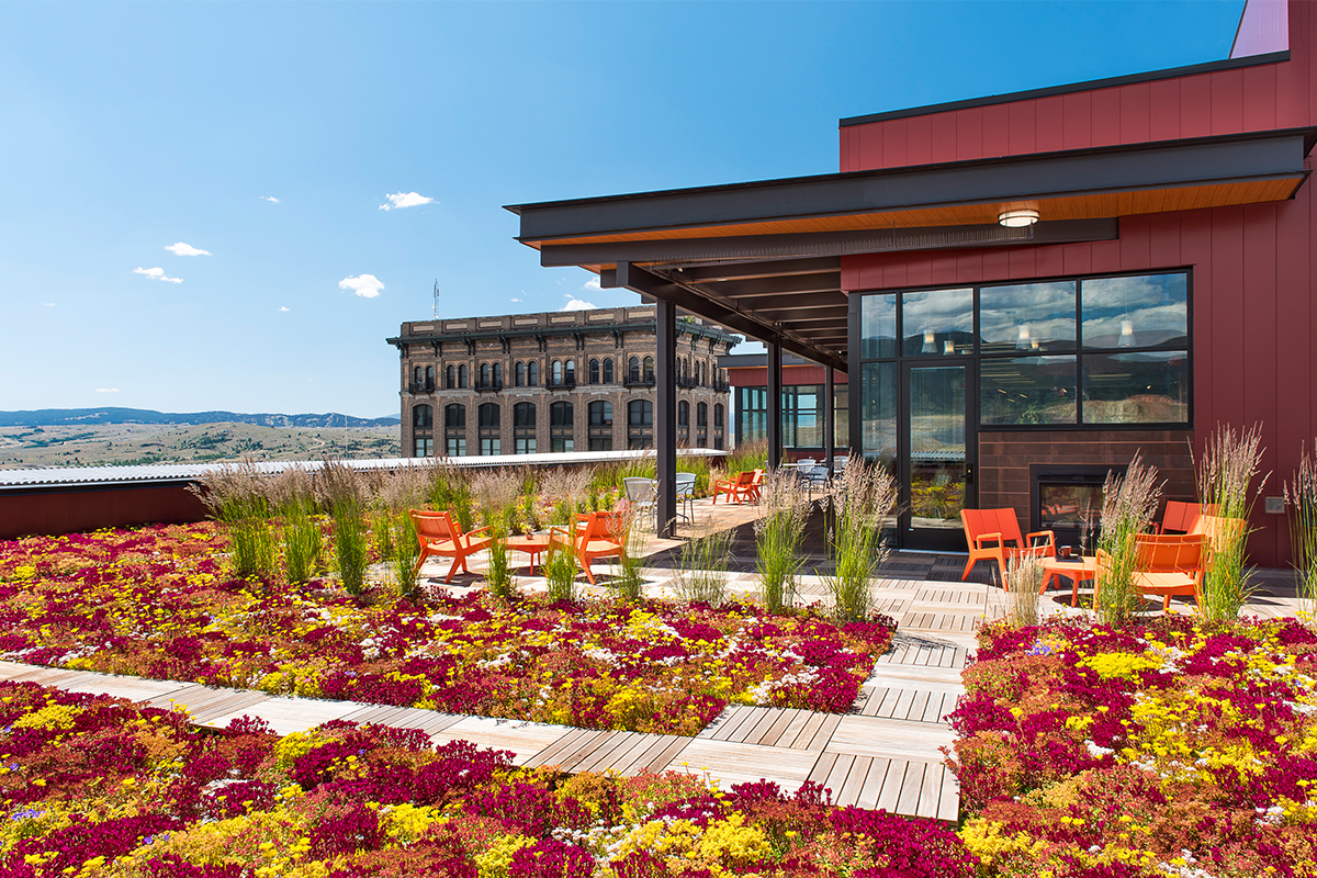 Colorful red, pink, and yellow living roof with patio seating.