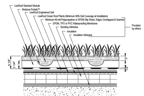 Detail Drawings Liveroof Hybrid Green Roofs