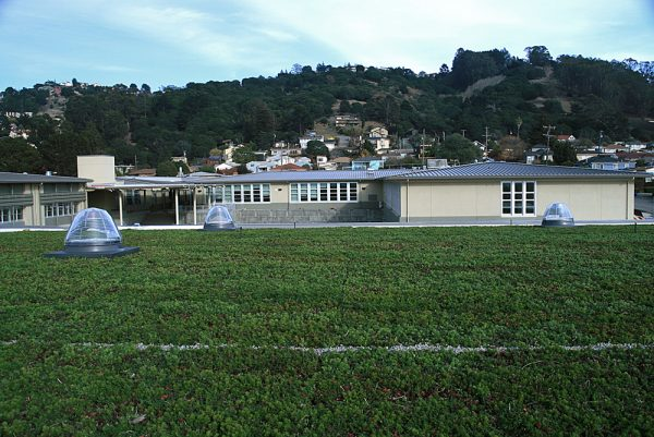 The green roofs are designed to lower heating/cooling costs as much as 14 percent.