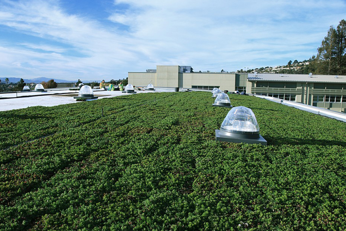 Green roof installers setting LiveRoof modules filled with jade-green plants.