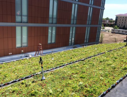 LiveRoof® Green Roof unites New Biosciences Building to CMU's Human, Environmental Health Research