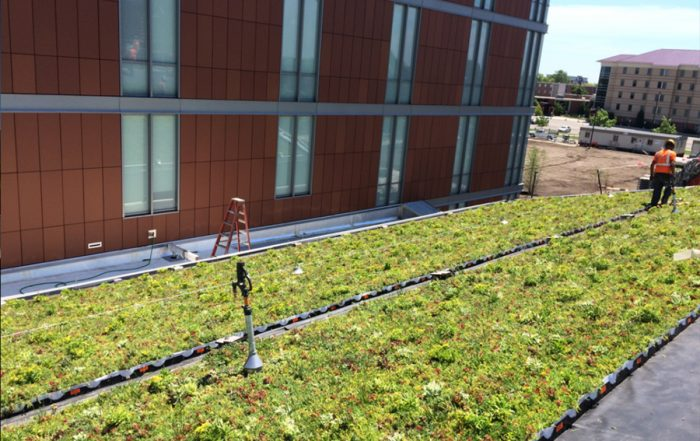 Green living roof in front of a red walled building.