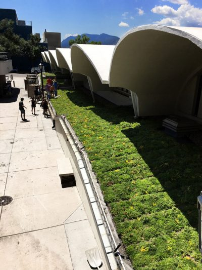 Colorado Ice Arena Green Roof.