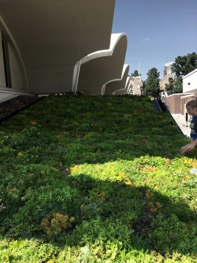 Colorado College Honnene Ice Arena Green Roof.