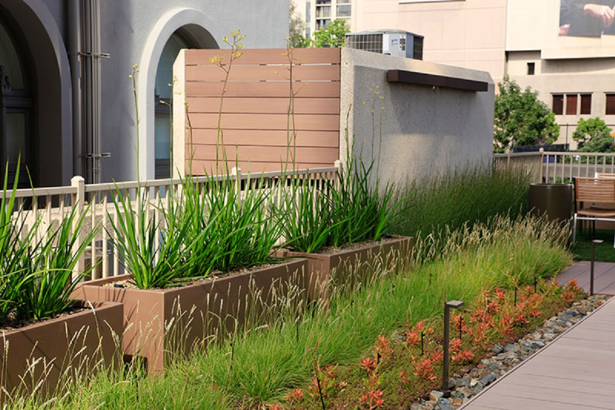 Rooftop garden with succulents, grasses and planters with walkway and lighting