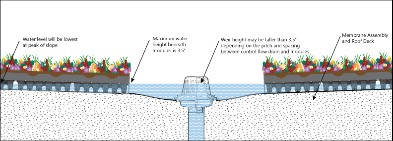 A diagram showing the maximum water height in RoofBlue risers.