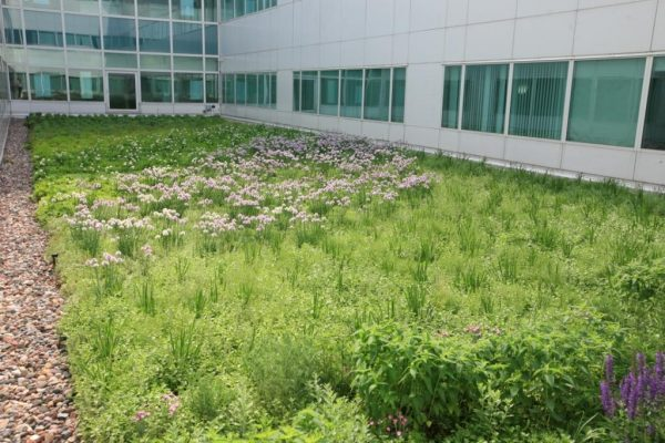 Aurora Sinai Hospital - LEED Gold