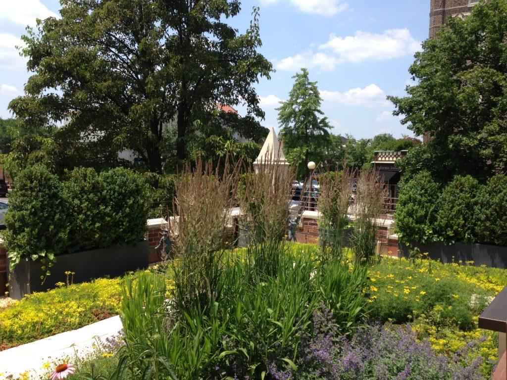 Art Gallery Rooftop Garden