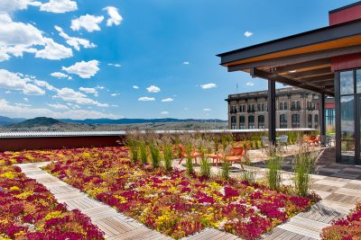 Brightly colored green roof with a sunny, blue-skied, Rocky Mountain view.