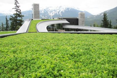Liveroof Hybrid Green Roofs Natural Function Natural Beauty