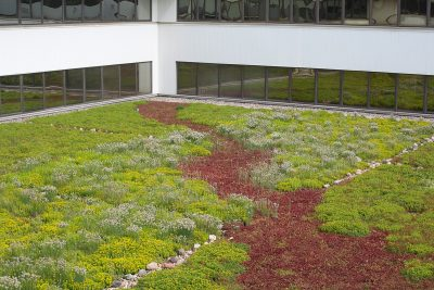 Red and green sedum green roof application.