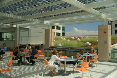 A cafe area next to a green roof application in San Diego.