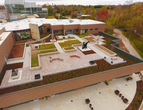 Frederik Meijer Gardens opens the Stuart and Barbara Padnos RoofTop Sculpture Garden