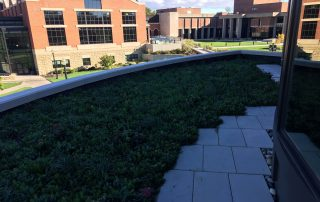 RoofStone paver walkway at green roof