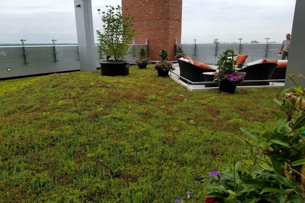 Green roof patio at Jersey Shore Medical Center