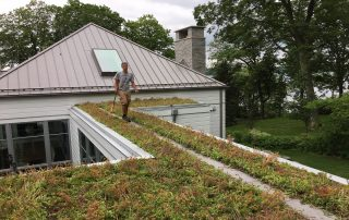 RoofStone paver walkway on Engerman residence green roof