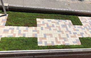 LiveRoof RoofStone pavers