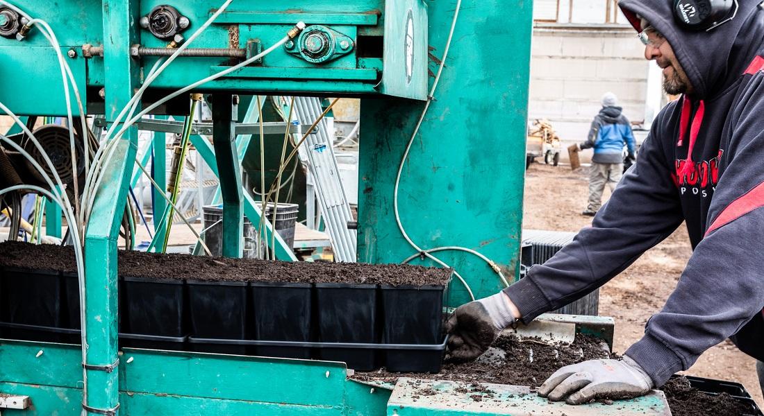 Hortech teammate pouring soil into plant flats